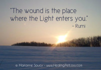 Healing Pet Loss Quote Rumi